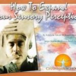 How to Expand Your Sensory Perception